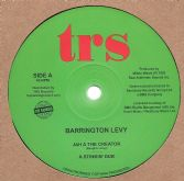 Barrington Levy - Jah A The Creator / A Stinkin' Dub / Little Children / Dangerous Dub (TRS) 12""